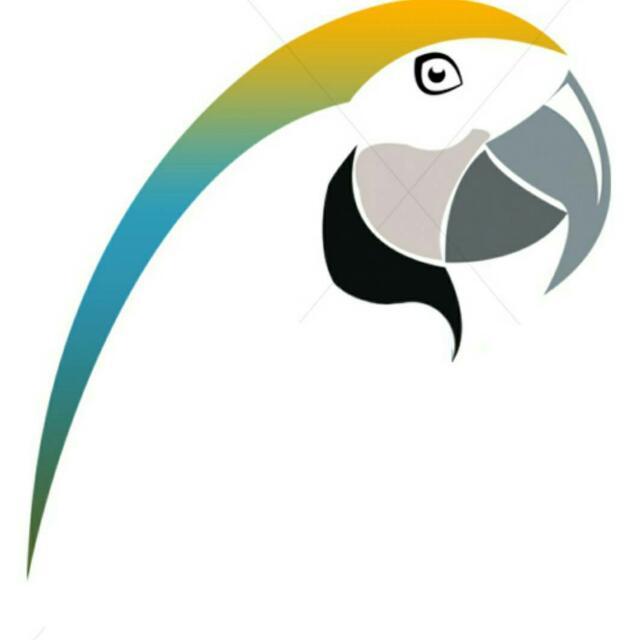 Parrot Nigeria News